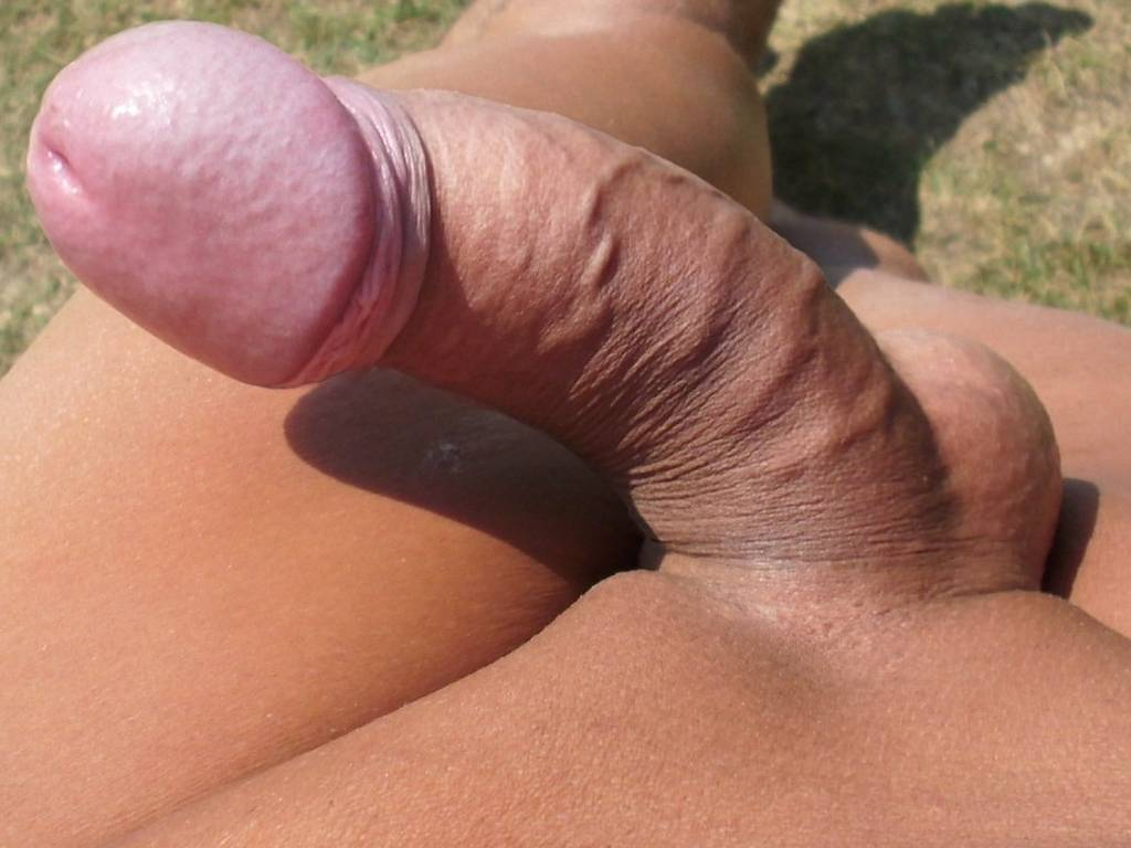 Erected Cock In Close Up
